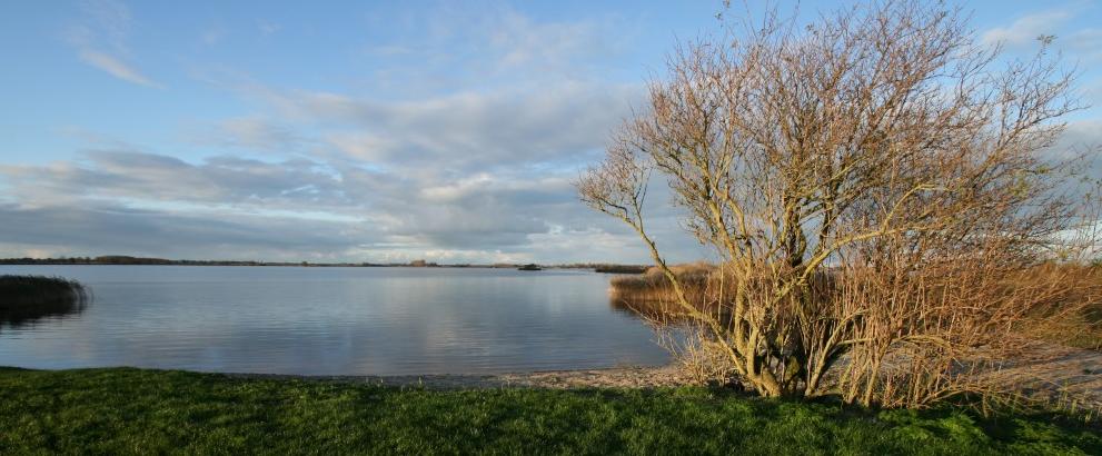 Het Baayersplak (foto door René Hogendijk, 2010).